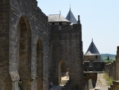 Chase in Carcassonne